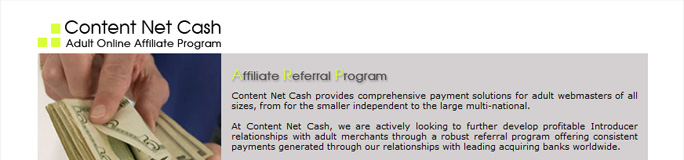 Уеб сайт на Content Net Cash, Interconsult Int. Ltd. - Уеб сайтове, Stenik